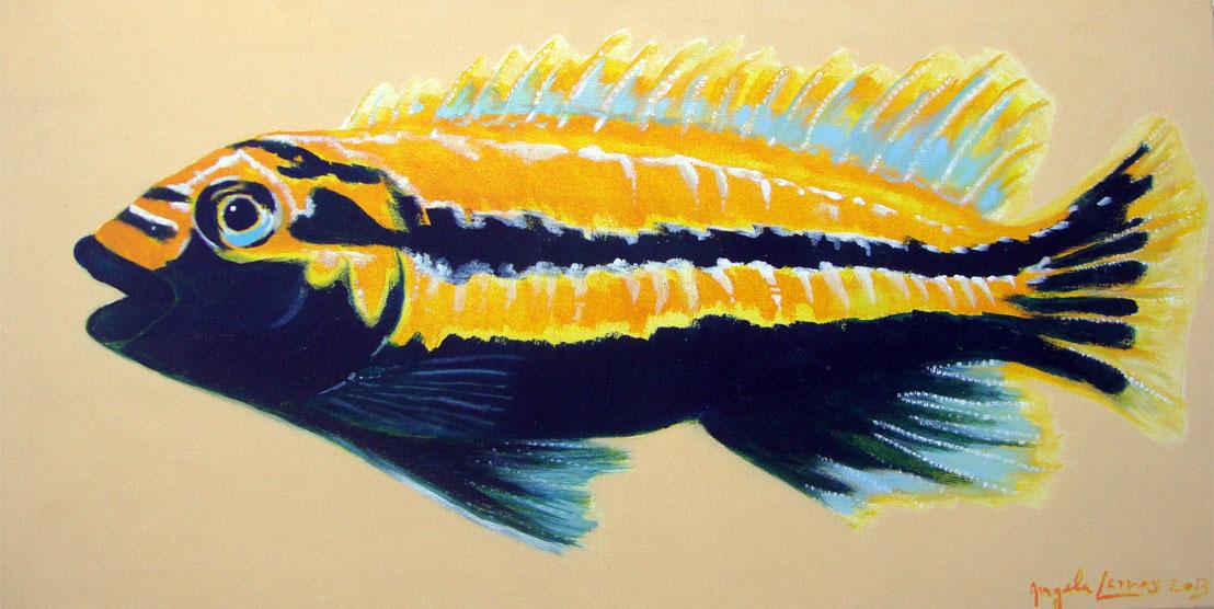 Peixe Amarelo 0.50X1.000 - Acrílico sobre tela - 0.50