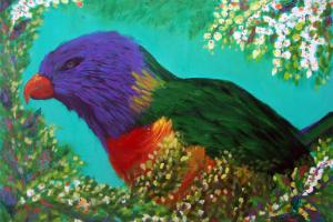 Rainbow-Lorikeet de Angela Lemos