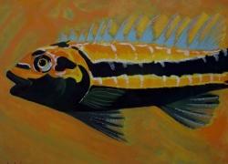 Peixe Laranja de Angela Lemos