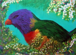 Rainbow-Lorikeet de Angela Lemos